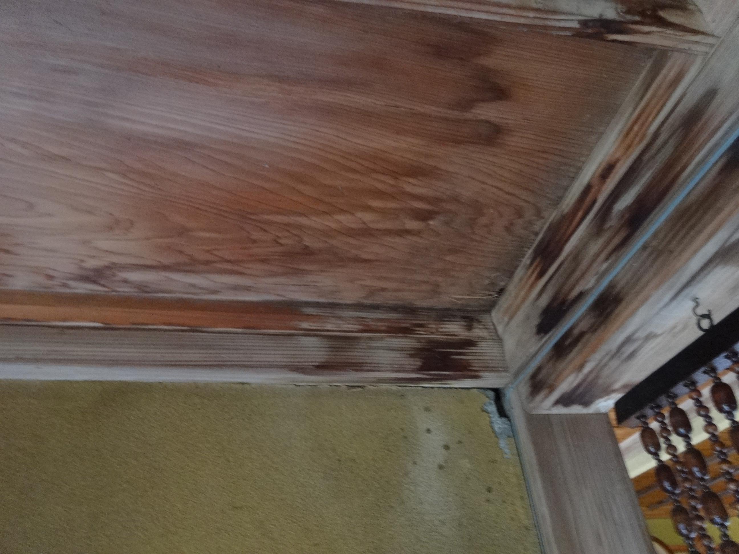 ゲリラ豪雨とは?ゲリラ豪雨で雨漏りする前に-屋根無料点検実施中|加藤瓦店
